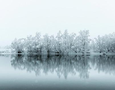 Запрет на посещение лесов ввели в Пермском крае