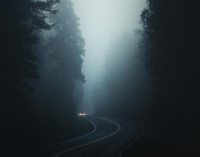 Луга далеко, Луга далеко... — Луга рядом! Как петербургские арестанты побывали в «относительном раю»