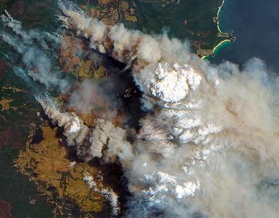 Курск претендует на звание народной новогодней столицы России