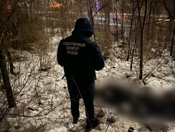 В районе Парка Победы прохожий нашел труп