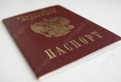 Разорвавший паспорт жены гражданин приговорен к исправработам