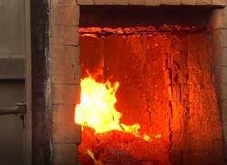 В Саратове сожгли 6 тонн зараженной кукурузы из чили