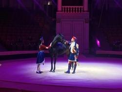 Открытие Саратовского цирка 25 декабря будет 'техническим'