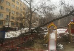 Дерево упало на детскую площадку и повредило газопровод