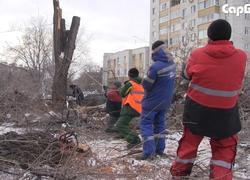Для стелы 'Город трудовой доблести' пилят деревья в сквере