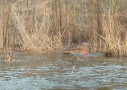 Тела трех пропавших рыбаков нашли в Волгоградской области