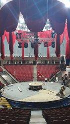 В цирке покажут шоу со львами и воздушным гимнастом в образе Юрия Гагарина