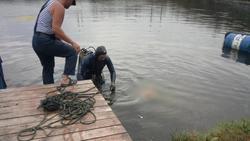 В пруду утонула женщина