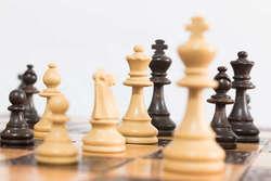Саратовские шахматисты одержали первые победы на Кубке мира