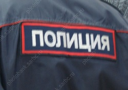 Горожанин получил срок за нападение на полицейского