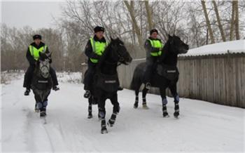 В Красноярском крае мужчина с марихуаной не смог убежать от полицейских на лошадях
