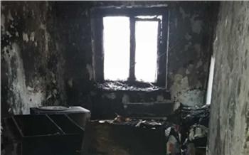 В Хакасии 2-летний мальчик сгорел при пожаре. Дома он был с 5-летним братом