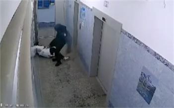 Жестоко избившего женщину в «Белых росах» злоумышленника все еще не нашли