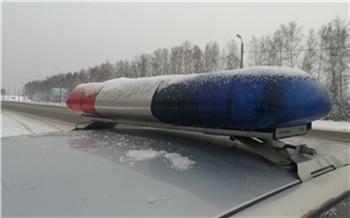 Спешившая к врачу жительница Лесосибирска не пристегнула в машине сына и попала в ДТП. Мальчик получил травму