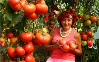 Создательница «Помидорного рая» из Минусинска благодаря своему блогу стала «интернет-звездой»