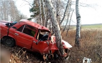 Въехавшего в дерево и погубившего троих пассажиров водителя будут судить в Красноярском крае