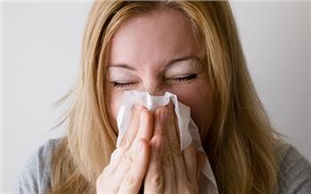 В Красноярском крае отмечается активность вируса гриппа В