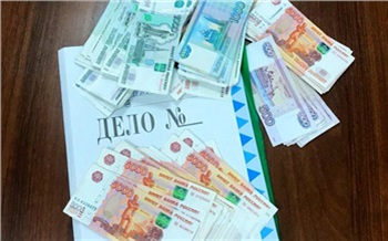 Трое жителей Красноярского края «заработали» на махинациях с маткапиталом десятки миллионов рублей