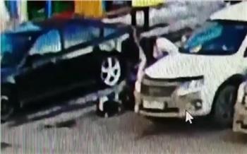 Появилось видео нападения собаки на двухлетнего ребенка в Красноярске