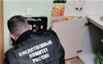 «Мальчик заглянул в приоткрытую дверь квартиры»: в СК рассказали подробности нападения на ребенка в Красноярске