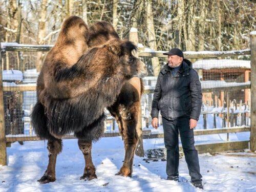 В брянском зоопарке живут любопытствующие обитатели фауны
