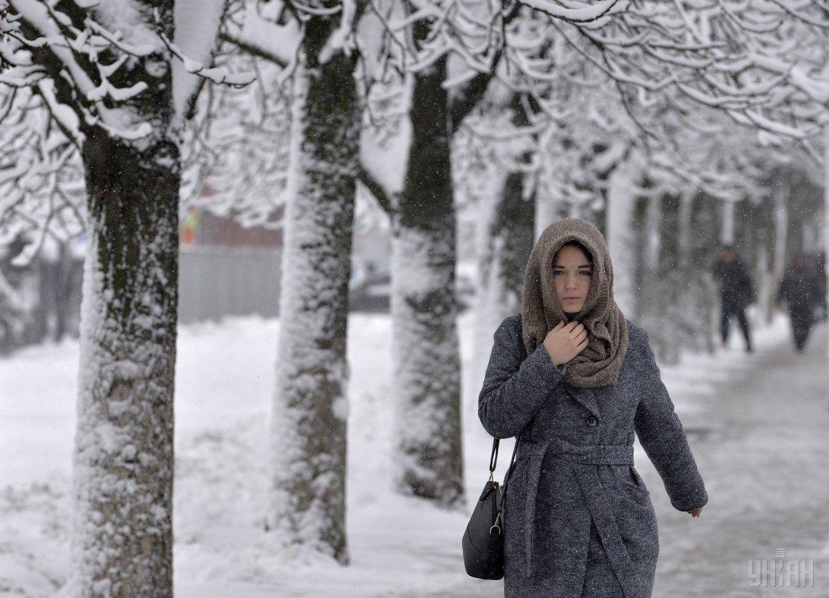 В Украине из-за снегопадов обесточены 273 населенных пункта в четырех областях