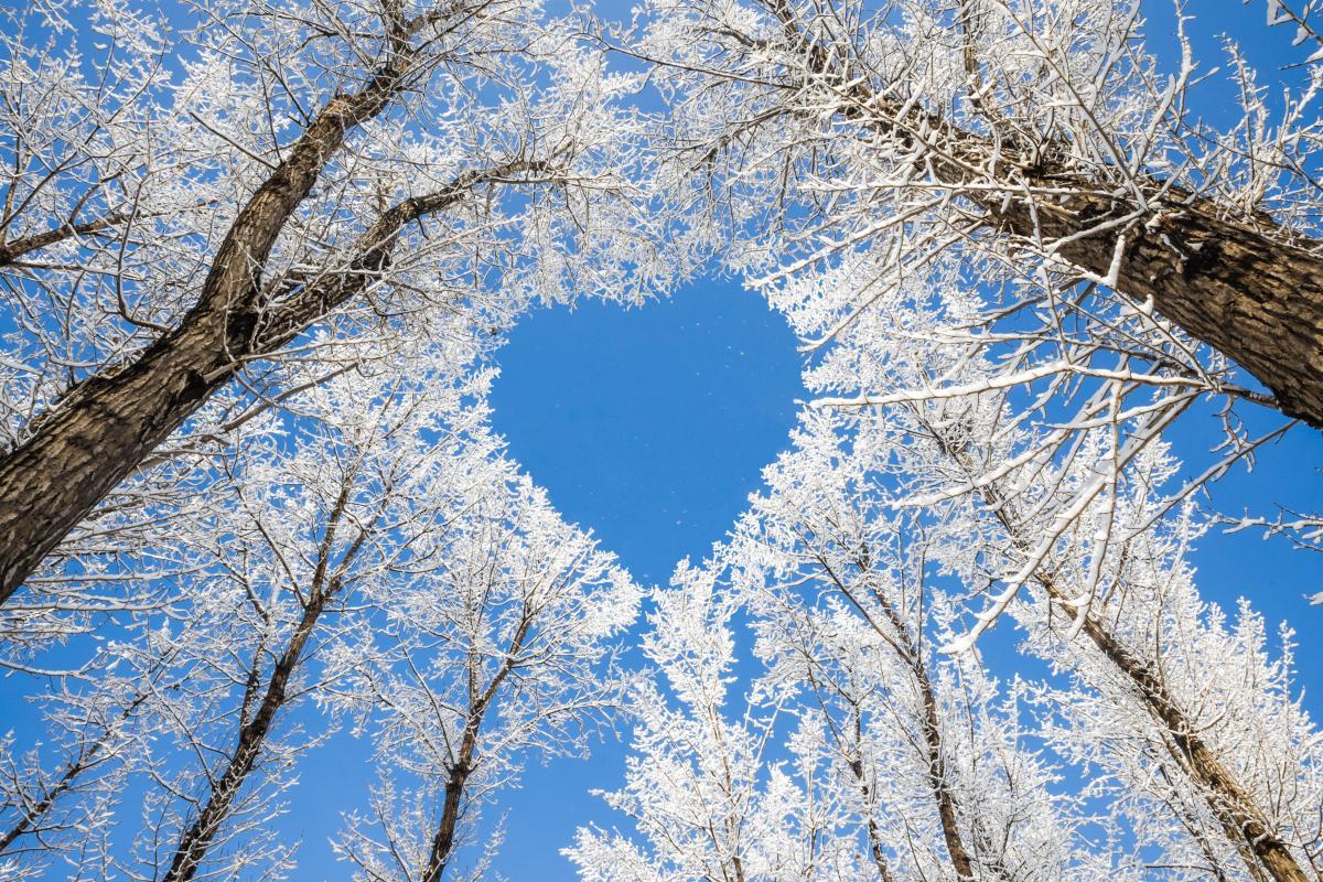 Праздники в феврале: какие даты будут отмечать украинцы в третий месяц зимы