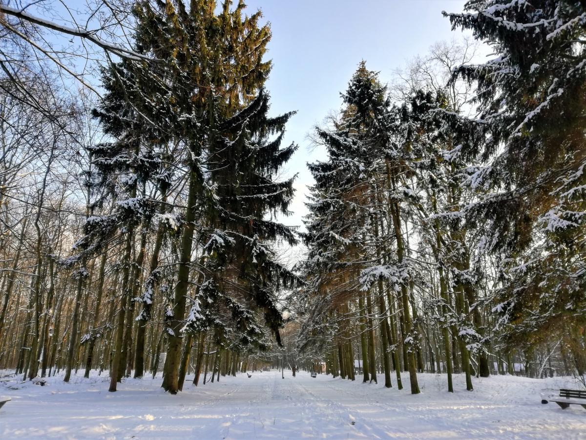 В Минприроды назвали причины изменения климата в Украине
