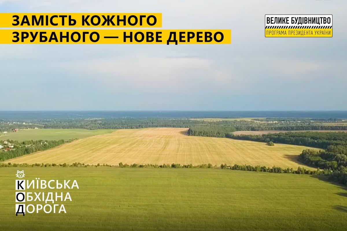 По программе президента при строительстве Киевской обходной высадят по новому дереву вместо каждого срубленного
