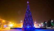 Выбираем лучшую ёлку Кузбасса (и забудьте про Кемерово)
