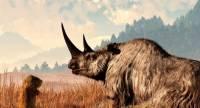 В Сибири найдена замороженная туша шерстистого носорога