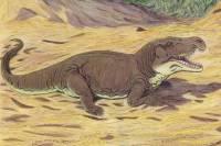 В Аргентине нашли новый вид рептилий, живших 230 млн лет назад