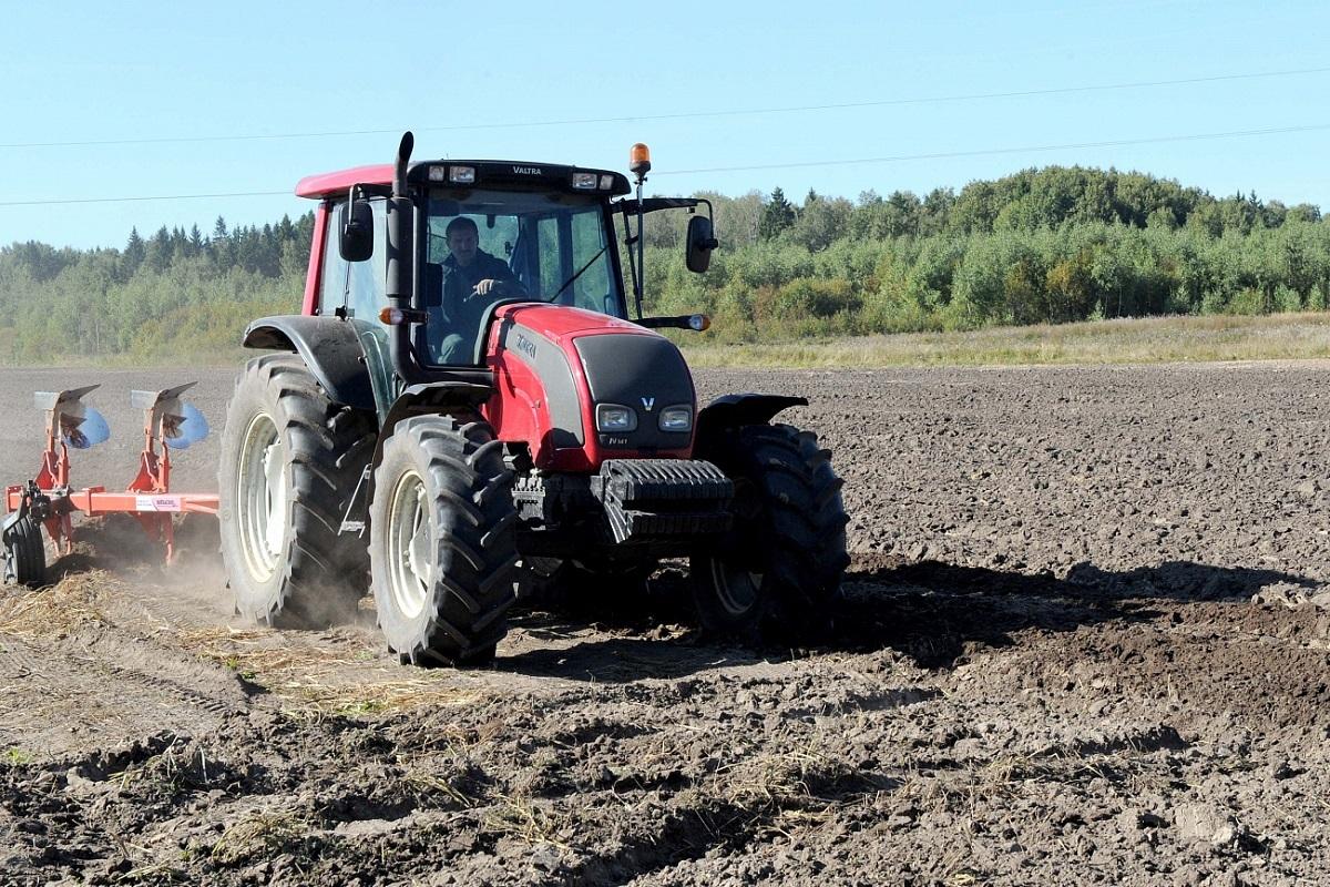 Стало известно, что и в каких объемах будут выращивать аграрии Тверской области