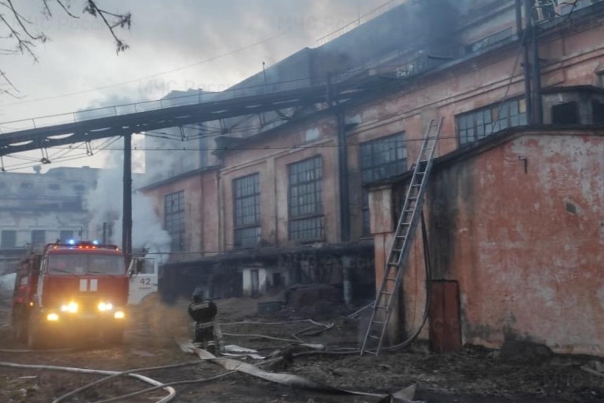 В Тверской области снова загорелся Нелидовский ДОК