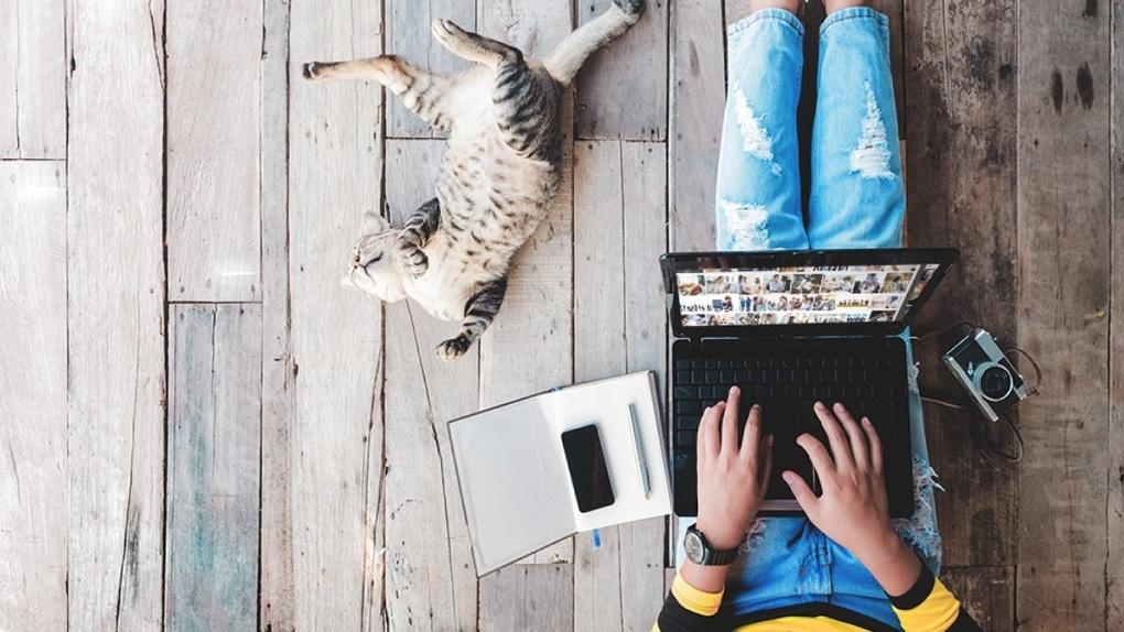 Билайн защищает клиентов от некачественных контентных сервисов в интернете