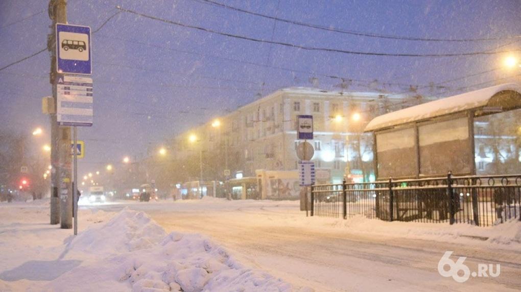 Пока весь Екатеринбург засыпало снегом, и. о. главы города взял снегоход и уехал в лес. Фото