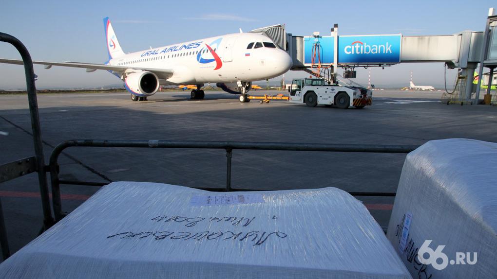 Авиакомпании получили допуск на полеты из Кольцово в Болгарию, Израиль и Черногорию