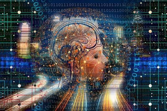 Владимир Потанин вложил 500 млн рублей в исследование человеческого мозга