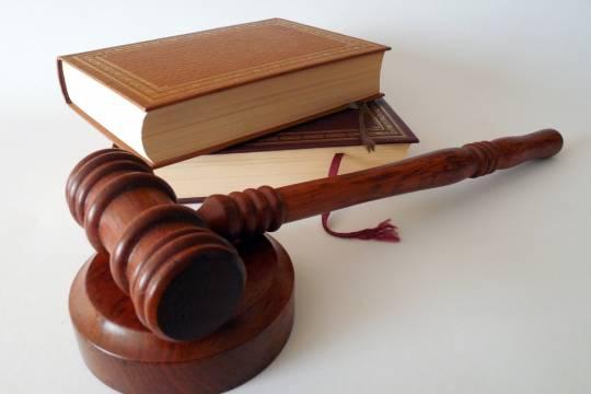 Подруга миллионера-педофила Эпштейна попросила суд не наказывать её за сутенёрство
