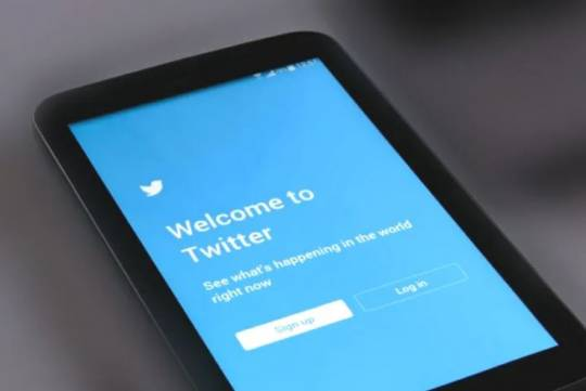 Роскомнадзор обозначил срок возможной блокировки Twitter