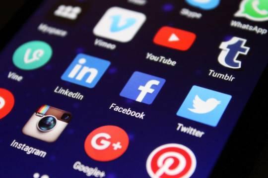 Роскомнадзор: Соцсети удалили до 50 процентов призывов к несанкционированным митингам