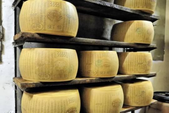 Российские сыровары выступили против возвращения итальянского пармезана
