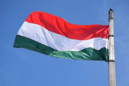В МИД Венгрии назвали «лицемерием» критику Евросоюза на фоне ареста Навального