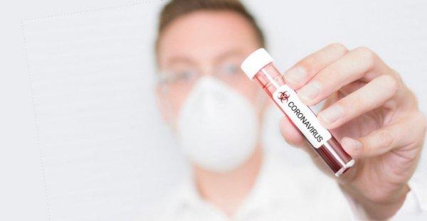 Немецкий тест на коронавирус в домашних условиях