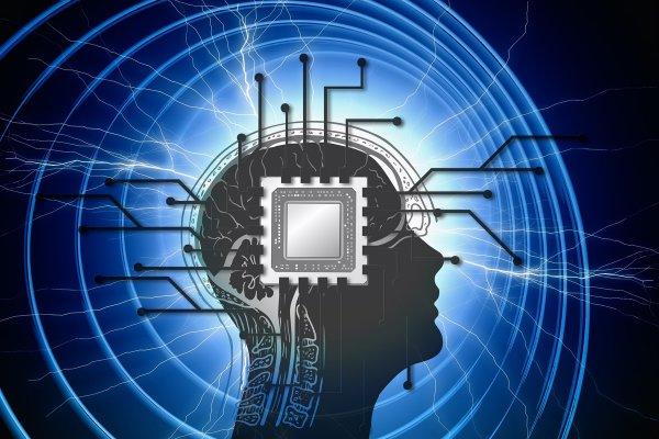 Нижегородские ученые рассказали о разработке «мозг на чипе»