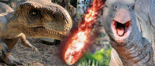 Геологи выяснили под каким углом упал астероид, уничтоживший динозавров