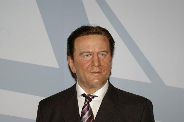 Экс-канцлер ФРГ назвал посла Украины «карликом» и поддержал Россию