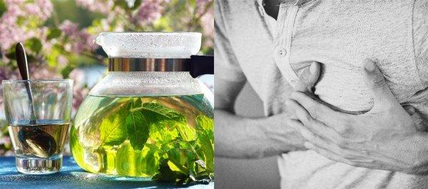 Учёные признали зелёный чай способом снижения «плохого» холестерина
