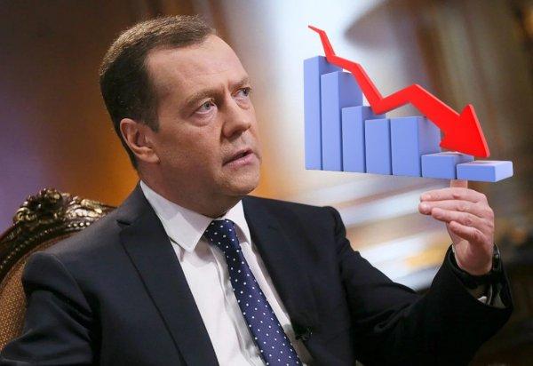 Медведев выделил три главных «шока» российской экономики в 2020