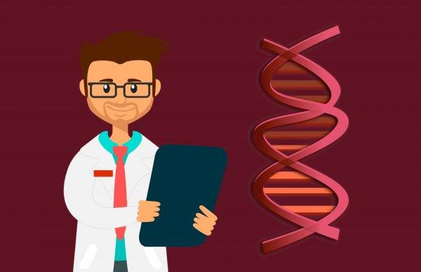 Ученые нашли мутации в гене TRPM3, вызывающие симптомы эпилепсии
